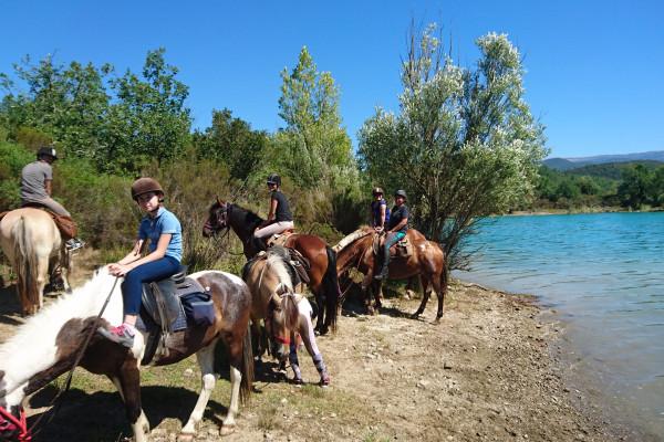 Demi journée équitation
