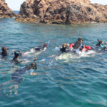 Snorkeling - Port Fréjus