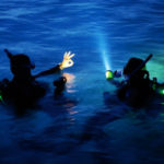 Night Dive  - Fréjus/Saint Raphael