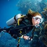 Beginner diving training Level 1 - Fréjus