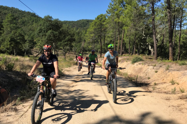 Electrically assisted mountain bike tour - Special groups