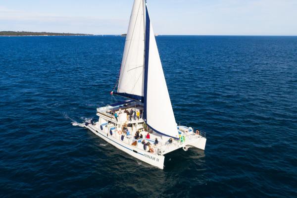 Maxi-Catamaran NINAH II