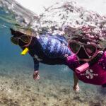 Snorkeling - Port Fréjus Plongée