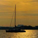 Maxi-catamaran Lady Paca