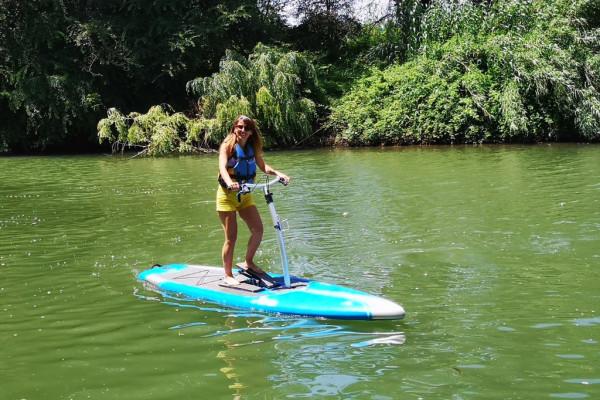 Paddle stepper rental