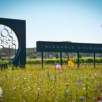 Le Clos des Roses - Visit the Domain