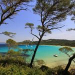 Porquerolles Islands - Coach excursion