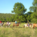 Horse riding - Discovery of the Lake of Saint Cassien 2h