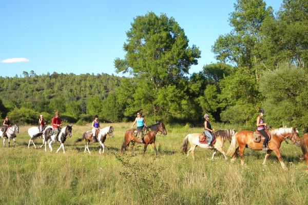 balade à cheval découverte du lac de saint cassien les poun's en herbe 1
