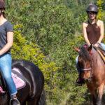 Activites – Equitation Montauroux Les poun's en herbe
