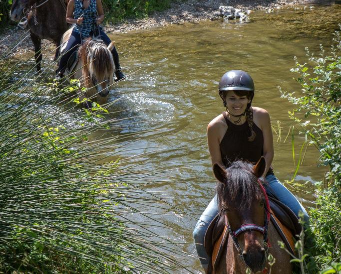 Nico Gomez – Esterel Cote d'Azur – Equitation – BD (38)