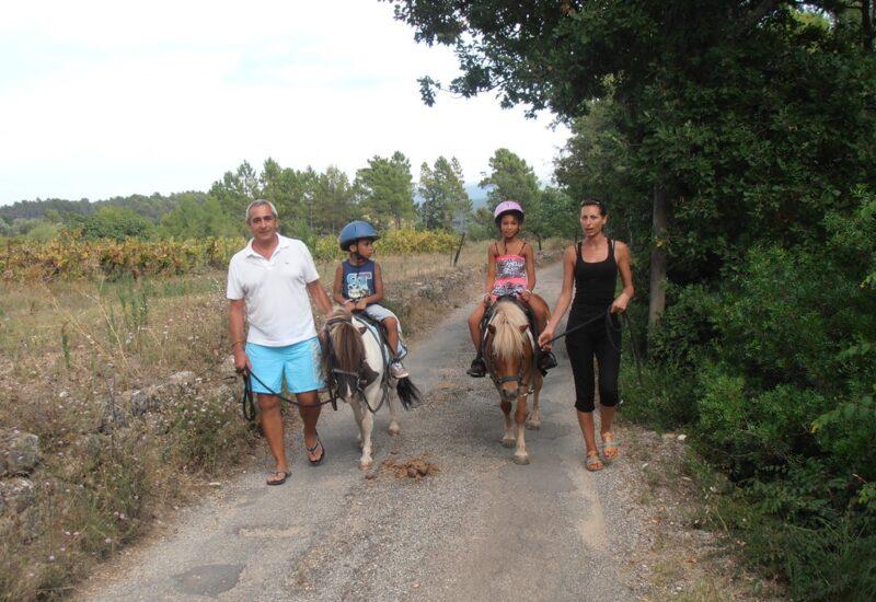 tour de poney – enfants – callian