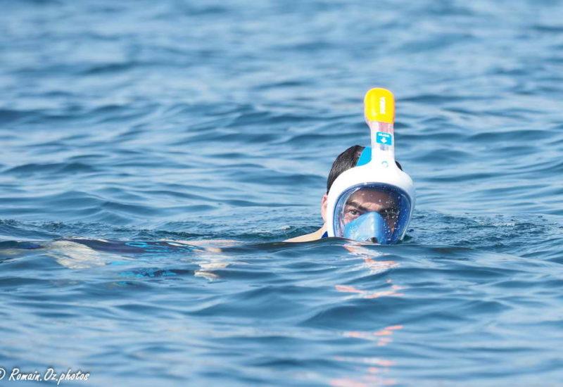Snorkeling Sardinaux Evasion WGP