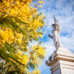 Balade naturaliste - Au coeur du Tanneron et ses mimosas