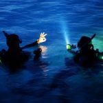 Plongée Nuit niveau 1 - Port Fréjus