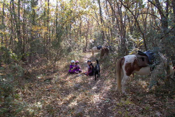 goûter à poney dans la forêt