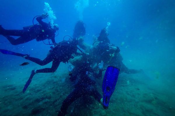 Plongée découverte à plusieurs