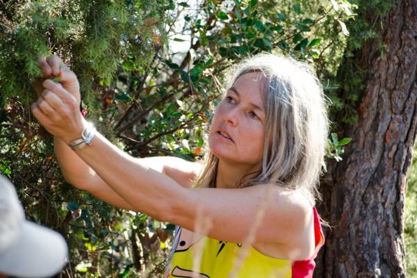Sorties commentées dans l'Estérel avec une guide naturaliste Marjorie Ughetto