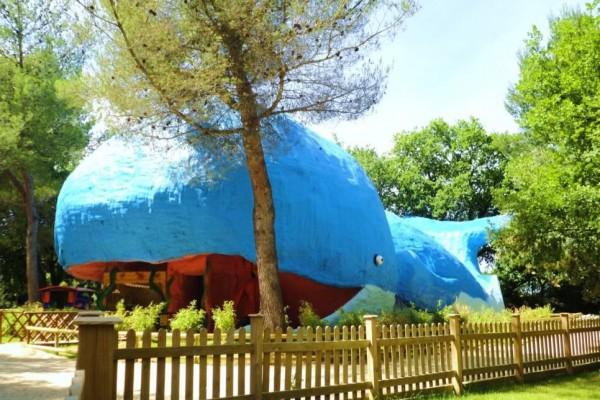 La baleine, parc familial en plein air