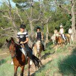 Equitation - Sortie cavaliers confirmés Dramont