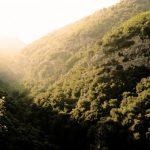 Canyoning niveau 2 & 3 - Vallée de la Roya